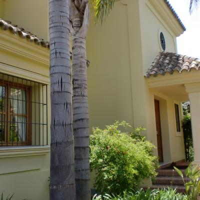 Morman2-Construcciones Villa en Cortijo Blanco 4